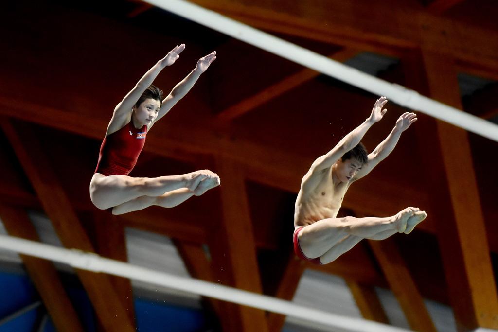 Этап Мировой серии ФИНА по прыжкам в воду 2019 года