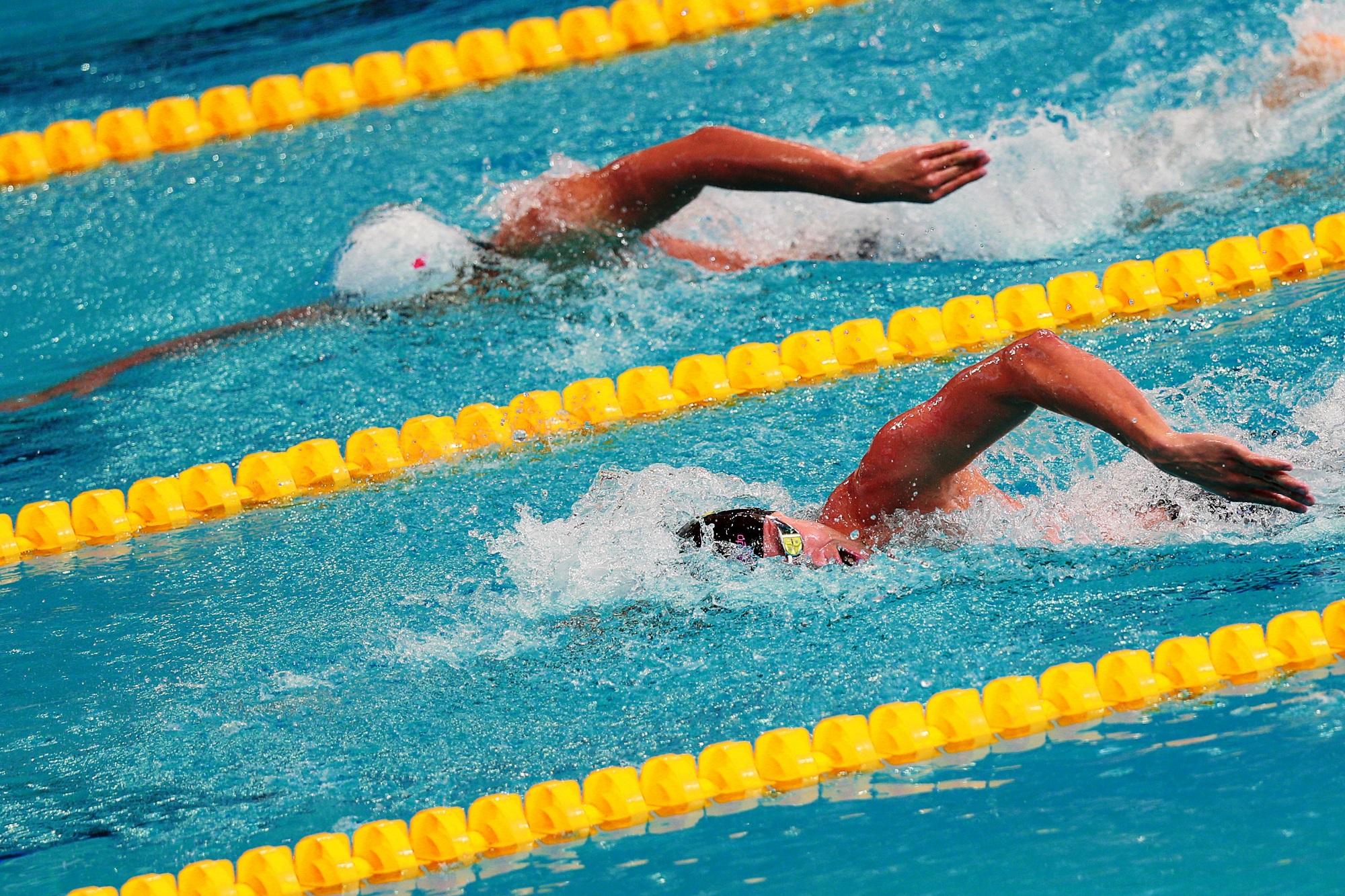 Этап Кубка мира FINA по плаванию